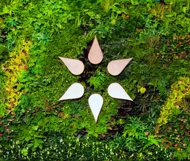 etain symbol on greenery